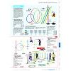 Seite 491 Sport-Thieme Katalog