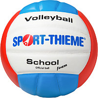 Sport-Thieme Volleyball