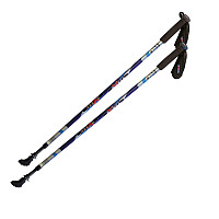 Axess® Nordic Walking Stöcke