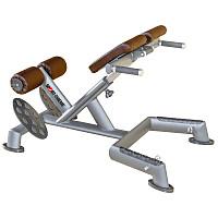 Sport-Thieme® Rückenstrecker