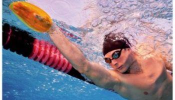 Paddles: Effektives Krafttraining im Wasser