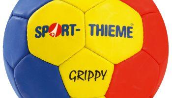 Handball WM 2013 in Spanien