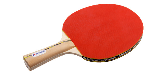 "Sport-Thieme® Tischtennisschläger ""Wien"""