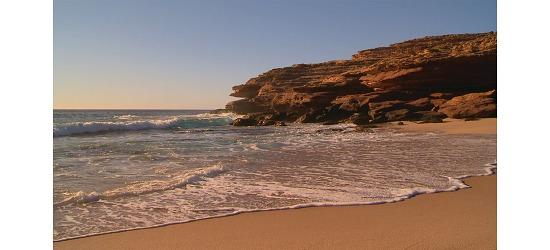 DVDer Naturoplevelser DVD Weekend ved stranden
