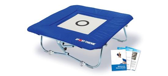 """Sport-Thieme® Minitrampolin """"standard"""" med integreret kantpolster Minitramp 112"""