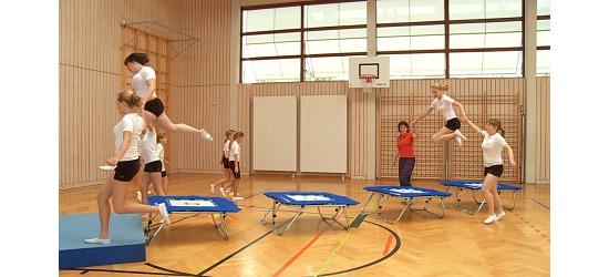 """Sport-Thieme """"Standard"""" Minitramp Minitramp """"112"""""""