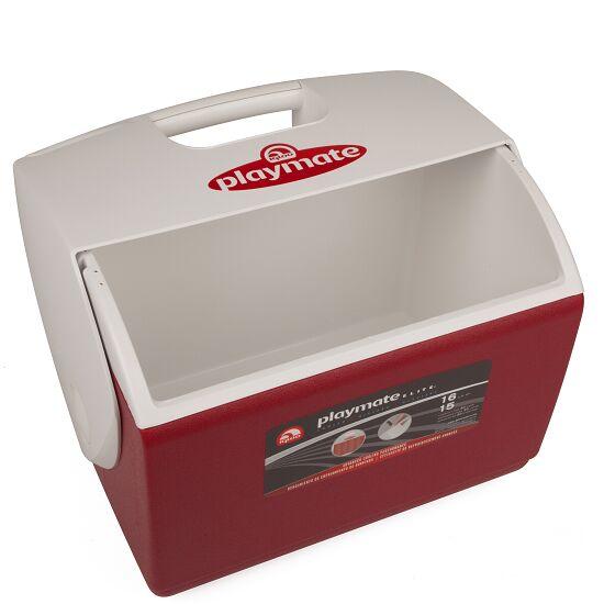 Große Betreuer-Eisbox ohne Inhalt