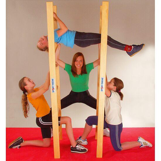 Sport-Thieme® Akrobatikleiter-Paar