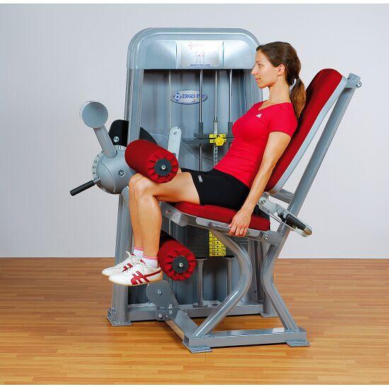 Ergo-Fit® Leg Flexion 4000 4000