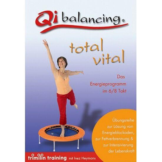 """DVD """"Qibalancing"""""""