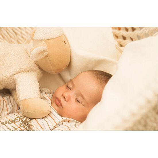 Babyschwinger Set