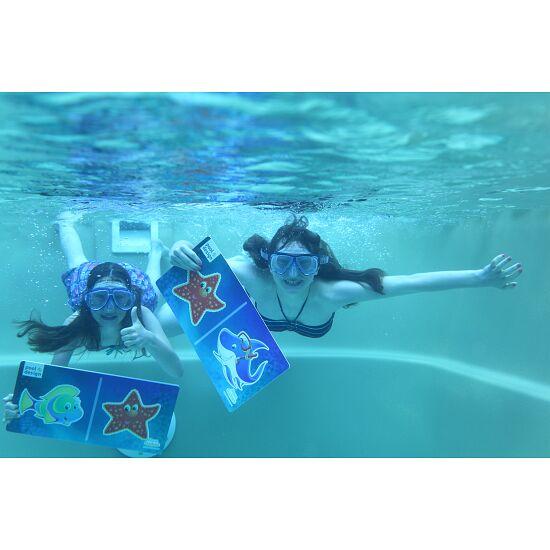 Aqua Game Domino