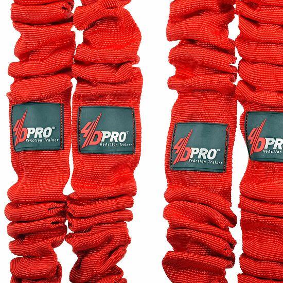 4D Pro Lambda Bänder Standard
