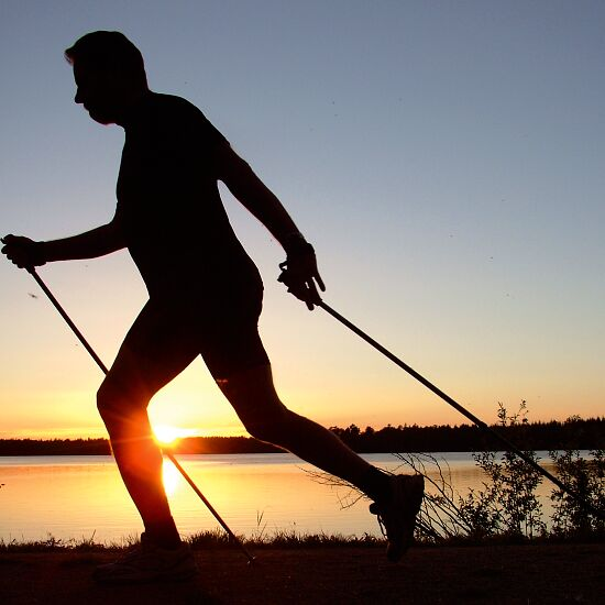 """Axess® Nordic Walking Stave """"W40"""" 105 cm"""