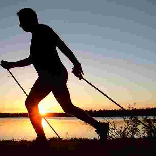 "Axess ""W40"" Nordic Walking Poles 105 cm"