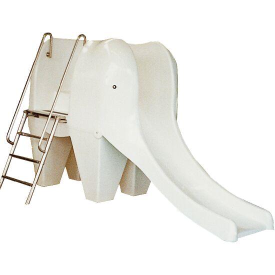 Benjamin -Elefantrutchebane