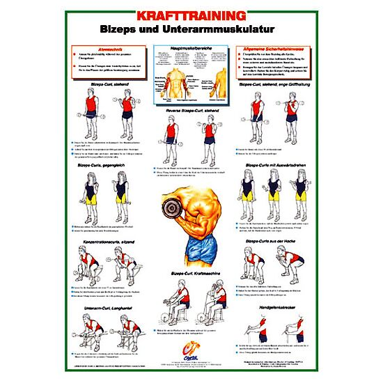 Chartex Krafttrainingstafeln