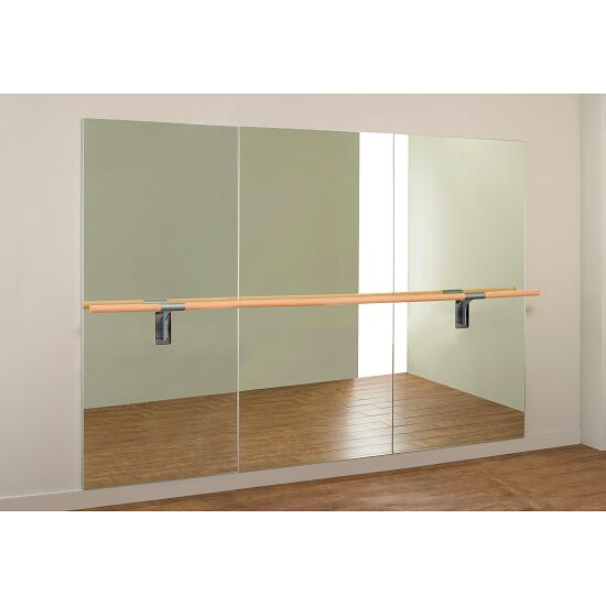 """Dinamica Ballet """"Amadeus"""" Ballet Mirror 3-m single barre and 2 holders, 3.00x2.00 m"""