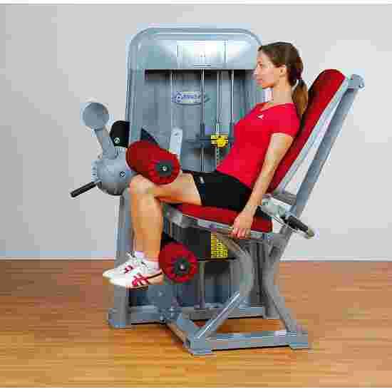 Ergo-Fit Leg Flexion 4000 4000