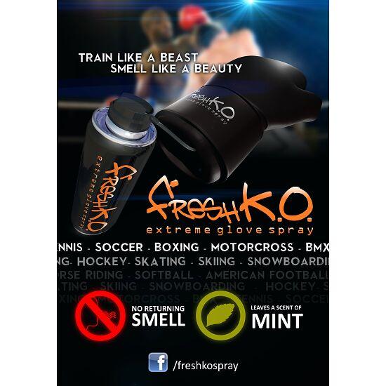Fresh K.O. Desinfektionsspray