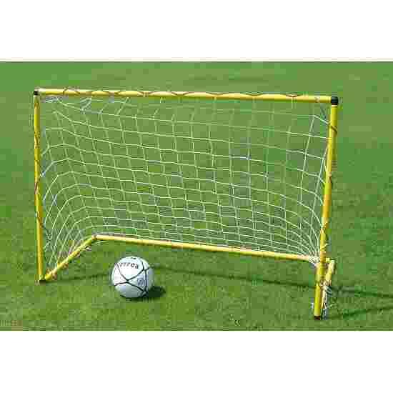 """""""Gym"""" Mini Goal"""
