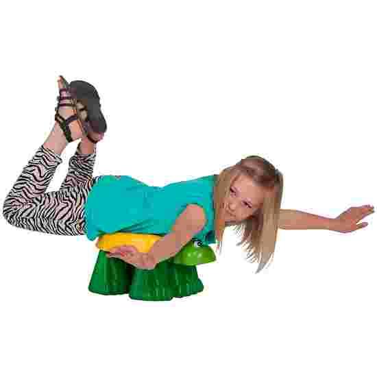 Gymnastics Turtle