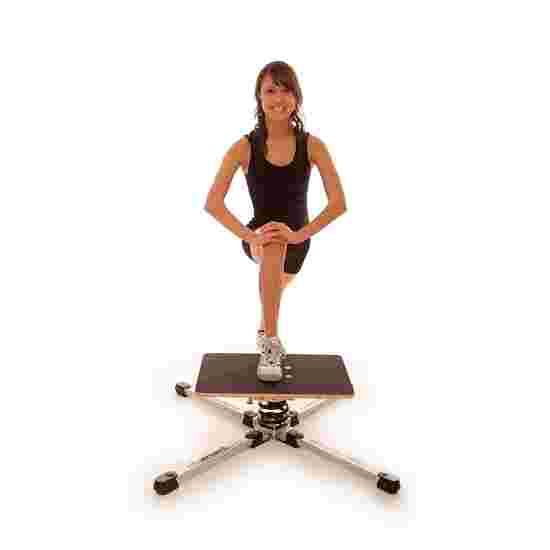 Health & Fitness Gyroboard
