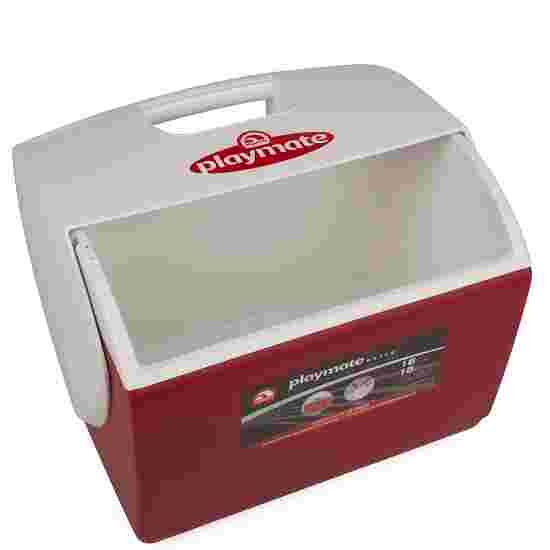 Igloo Large Treatment Ice Box Empty