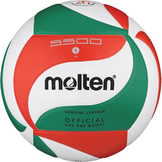 "Molten Volleyball ""V5M5500"""