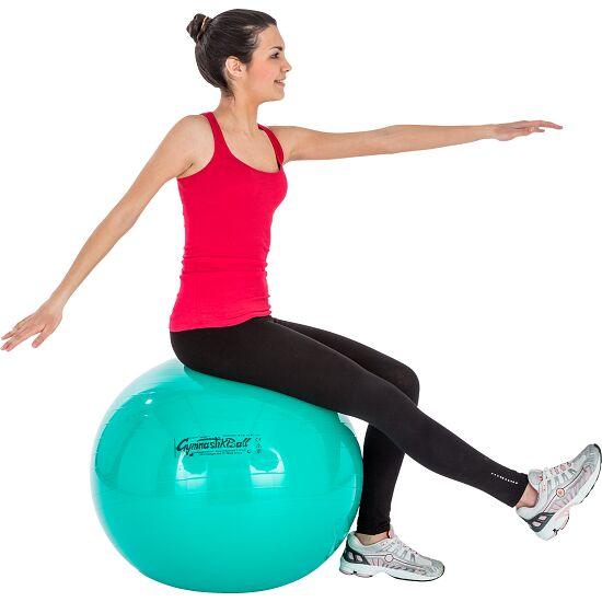 SPORT 2000 Gym Ball 75 cm weinrot