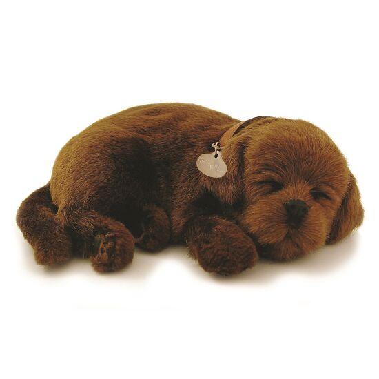 Perfect Petzzz Schlafende Welpen Labrador