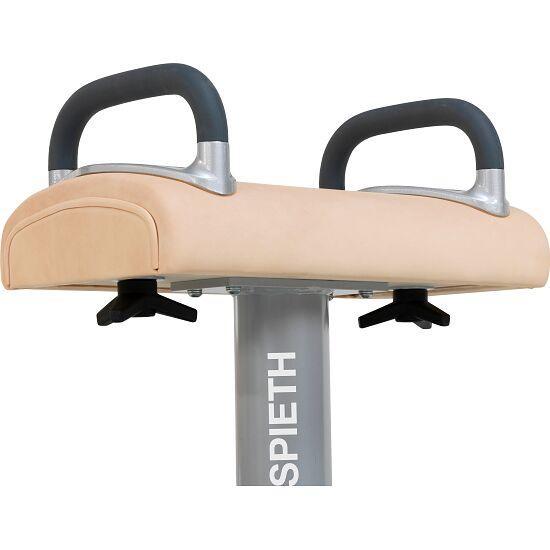 Spieth Pommel Training Aid