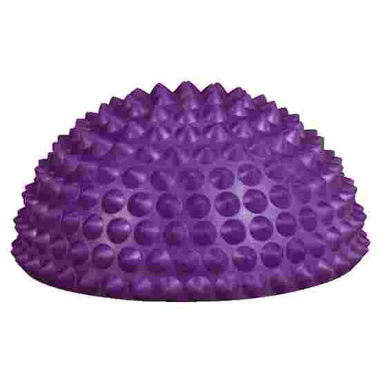 Sport-Thieme Balance Hedgehog Set