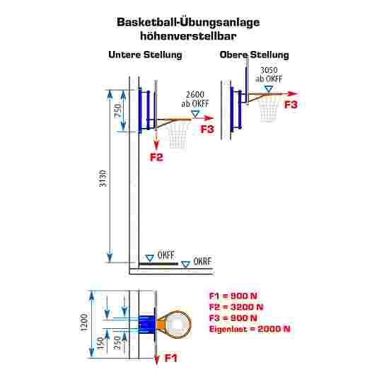 """Sport-Thieme Basketball-Übungsanlage """"verstellbar"""" Mit Höhenverstellung"""