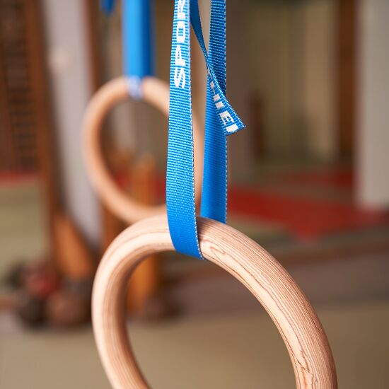 "Sport-Thieme ""Crosstraining"" Indoor Gymnastics Rings Without storage bag"