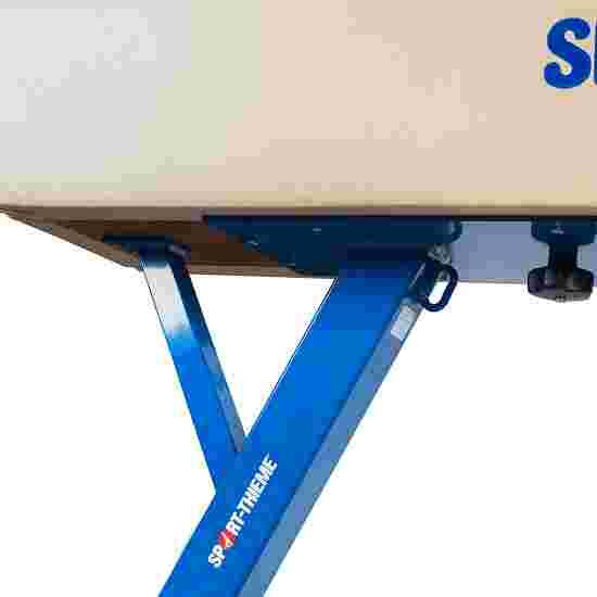 "Sport-Thieme ""Elite"" Pommel Horse"