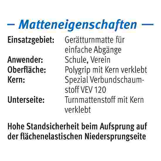 "Sport-Thieme ""GTM 3000"" Apparatus Gymnastics Mat 200x100x6 cm, 17 kg, Blue"