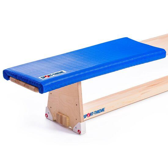 Sport Thieme Gymnastics Bench Cushion From 3 Each Each Sport