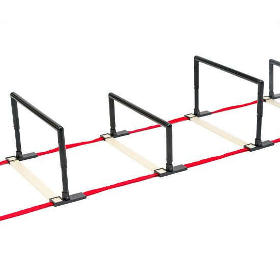 Sport-Thieme Height-Adjustable Hurdles and Coordination Ladder