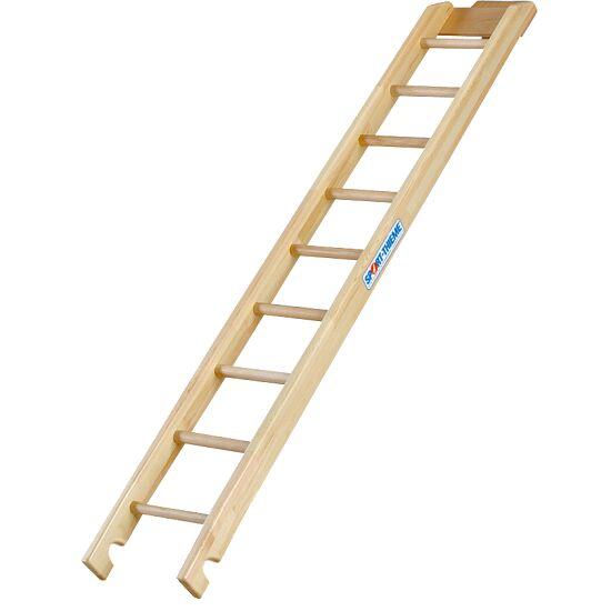 Sport-Thieme® Kombi Climbing Ladder