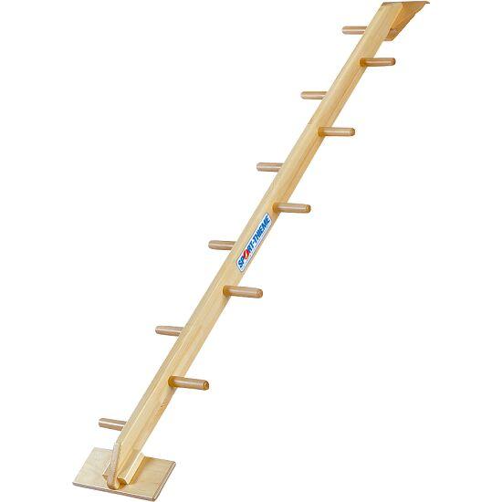 Sport-Thieme® Kombi Half Ladder