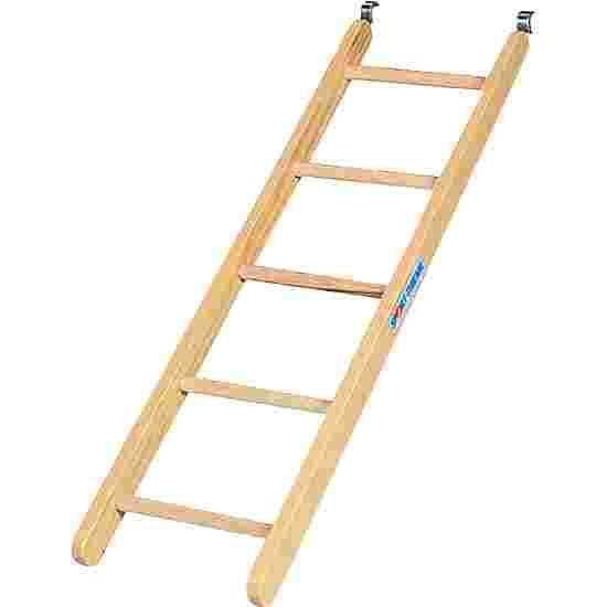 "Sport-Thieme ""Kombi"" Ladder"