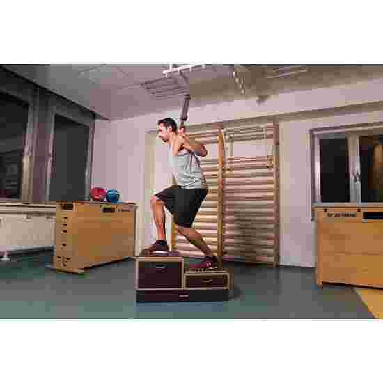 Sport-Thieme Kombi Plyobox 50x50x15 cm