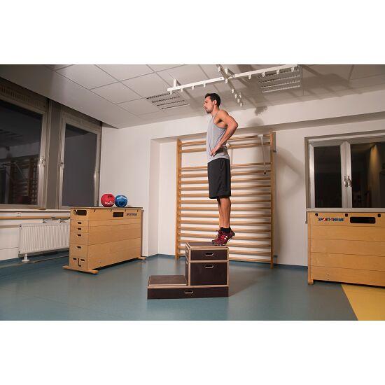 Sport-Thieme® Kombi Plyobox 50x50x30 cm