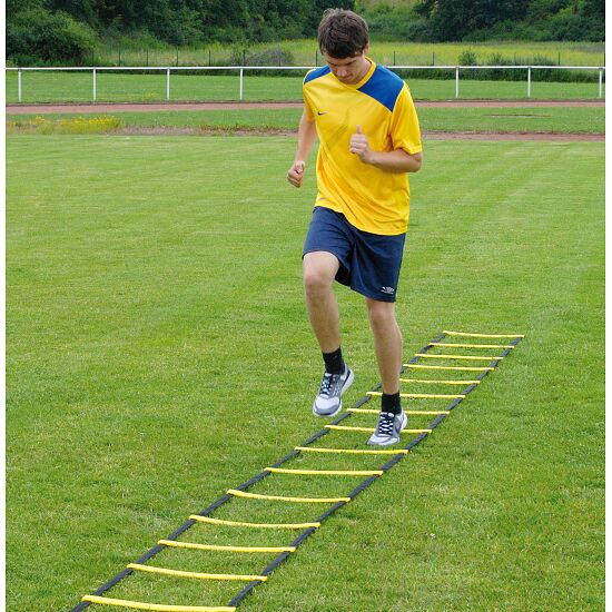 """Sport-Thieme® Koordinationsstige """"Agility"""" 8 m, Enkelt-stige"""