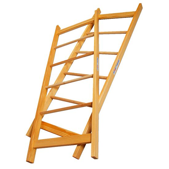 Sport-Thieme® Pair of Acrobatics Ladders