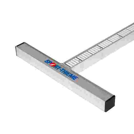 Sport-Thieme Scale