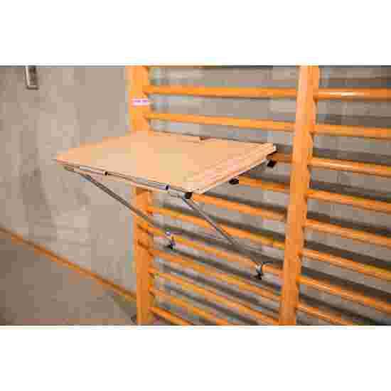 Sport-Thieme Slide Wall Bars Set 2