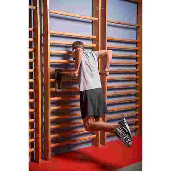 Sport-Thieme Sprossenwand mit Klimmzug-Dip-Stange Sprossenwand 230x80 cm