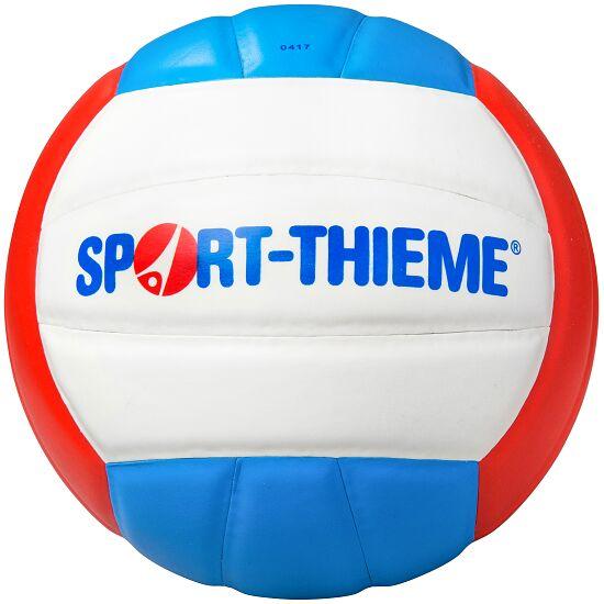 Sport-Thieme Volleyball